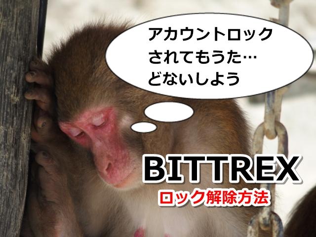 BITTREX,サポート,問い合わせ,アカウント,ロック,解除