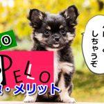 PELO,ico,登録方法,トークン,買い方,自動売買,ペロ
