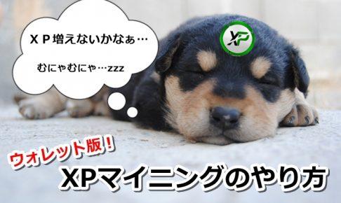 xp,xpコイン,マイニングウォレット,仮想通貨