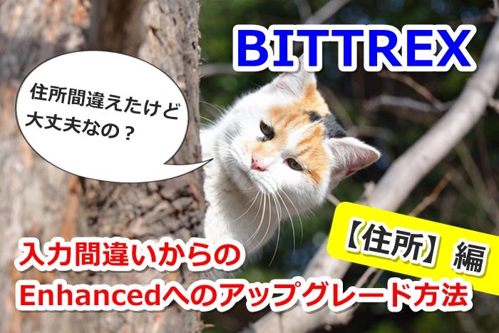 bittrex, アカウント, アプリ, サポート, ロック, 初心者, 問い合わせ, 解除,住所変更,間違い,住所
