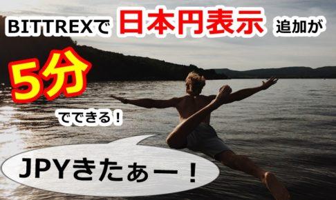 bittrex,ビットレックス,円表示,円,日本円,ツール,おすすめ