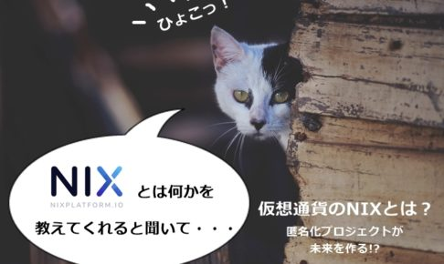 仮想通貨のNIXとは?
