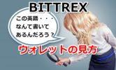 【Bittrex】ウォレットの見方を画像解説!総資産や送金履歴は確認できるの?