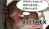 BITTREXのアカウントが「ロック・無効」に!サポートに問い合わせてみたら復活【英語例文あり】