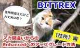 BITTREXで入力間違いからのEnhancedアップグレード方法!住所変更はどうやる?
