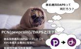 PCN(Peepcoin)/DAPSとは?匿名仮想通貨DAPSにリブートしてXVGを超える通貨になる!?将来性や取引所を解説