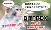 Bittrex(ビットレックス)の買い方・購入方法を画像付きで解説!これでもう迷わない!